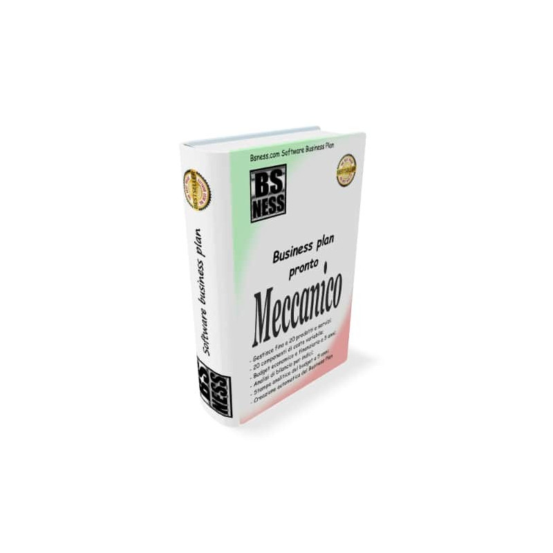 Software business plan meccanico