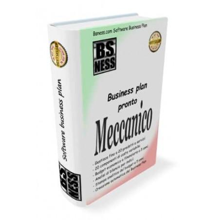 Software business plan meccanico