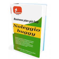 Noleggio buggy - Start-up Business plan