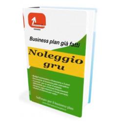 Noleggio gru - Start-up Business plan