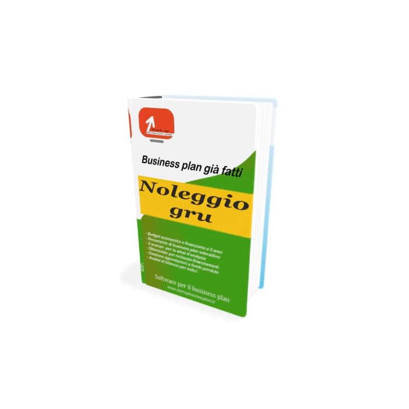 Business plan noleggio gru