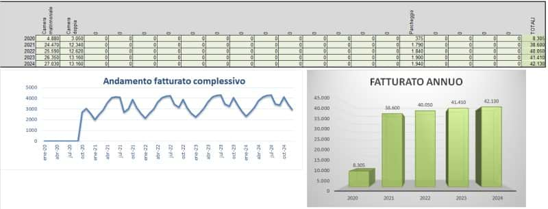 Business plan affittacamere con excel