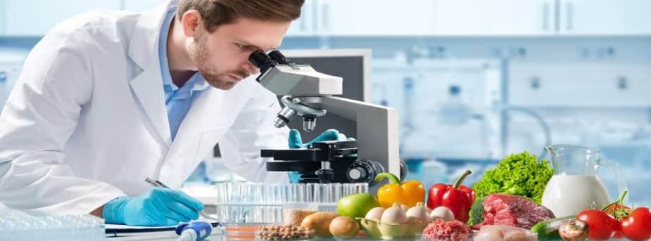 scopri come aprire una azienda di produzioni alimentari