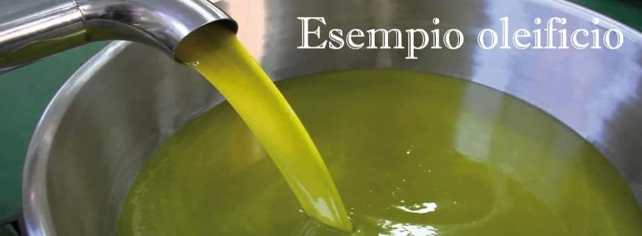 Scopri l'esempio business plan oleificio