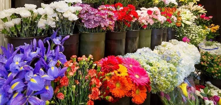 quanto guadagna un piccolo negozio di fiori